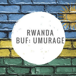 ANVIL Speciality Coffee Beans : Rwanda BUF Umurage
